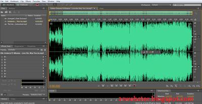 Adobe Audition CS5.5 Screenshot