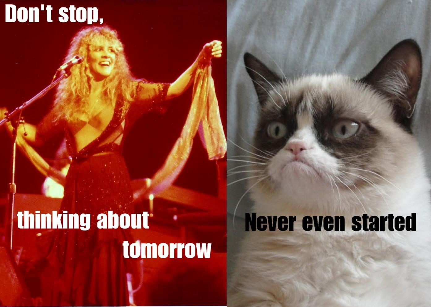 Grumpy Cat - The Rock'n'Roll years: Grumpy cat meets ...