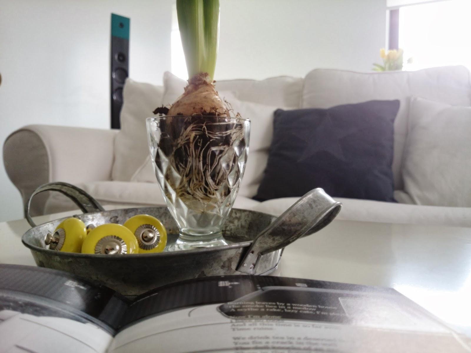 Biała sofa, biały salon, żółte gałki ceramiczne, ocynkowana taca, hiacynt w kileliszku