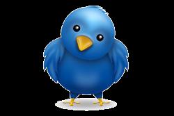 تابعني على تويتر
