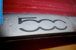 Fiat 500 car logo - صور شعار سيارة فيات 500