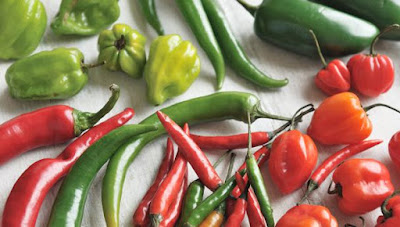 Chilli Helps in Weight Loss