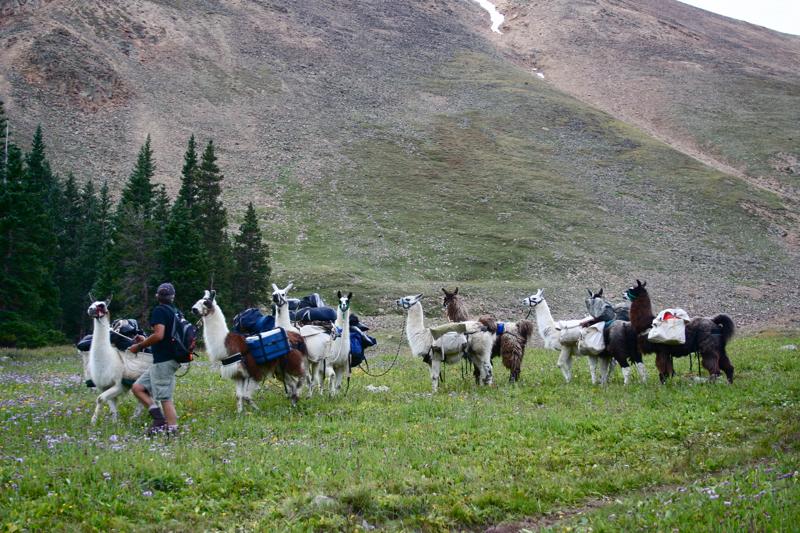 colorado lifestyle  hopeless aid station   leadville trail 100