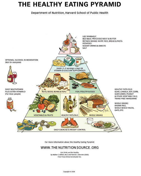 The best food pyramid out there. Sorry the image quality doesn't copy ...