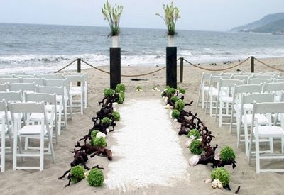 Beach Wedding on Beach Wedding Photos