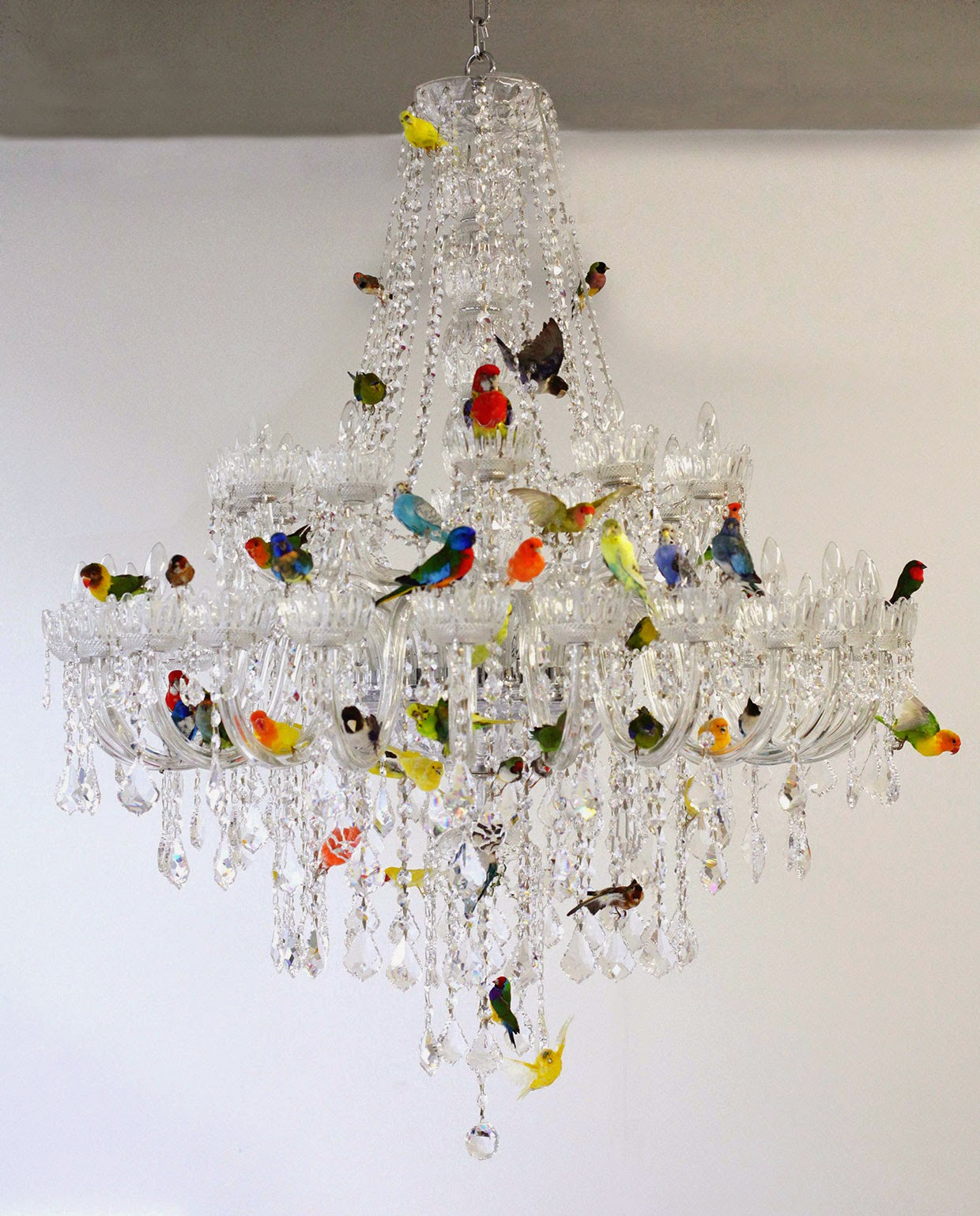 Total inspiration bird chandelier by sebastian errazuriz bird chandelier by sebastian errazuriz arubaitofo Gallery