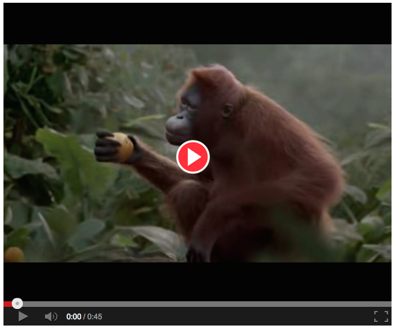 funny commercial, time to get your ape on with dancing to I like to move it move it