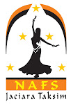 Logo oficial do NAFS