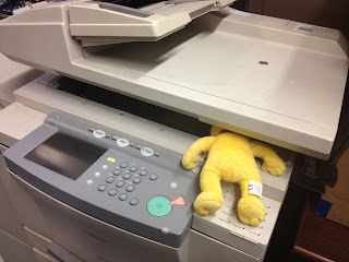 Pom Bear stuck in the Photocopier