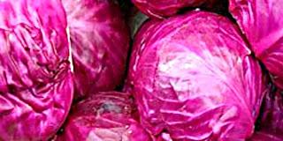 Manfaat Kubis atau Kol untuk Keshetan Tubuh
