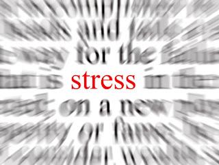 Sigue tu dieta sin estrés