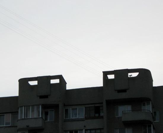 city, дом, Lutsk