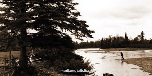 Hutan-hutan Angker Ini Sering Diburu Penggemar Misteri mediametafisika.com