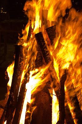 foc lemne img
