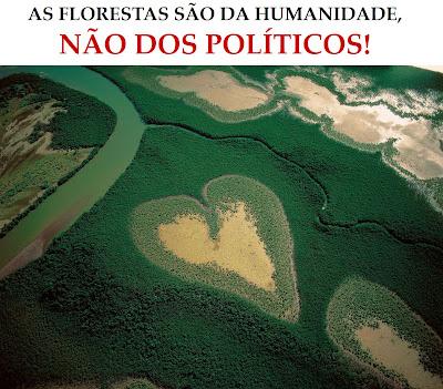 A Terra Vista do Alto: as florestas são de toda a humanidade!
