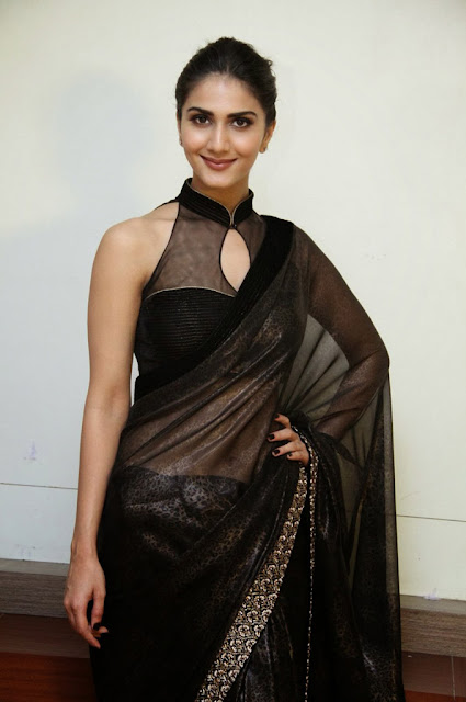 South Indian Actress Vaani Kapoor Wallpaper
