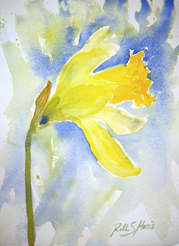 A Passion for Watercolour!: A bunch of daffodils