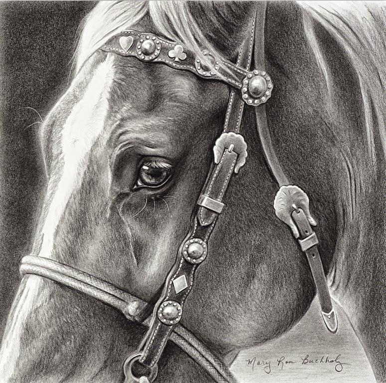 dibujos-a-lapiz-de-caras-de-caballos