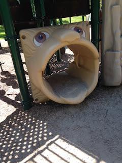 Chestnut hills playground/park