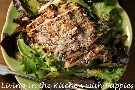 Living in the Kitchen with Puppies: Grilled Chicken Salad ...