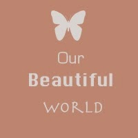 http://our--beautiful--world--365.blogspot.com.au/2013/12/week-23-december.html