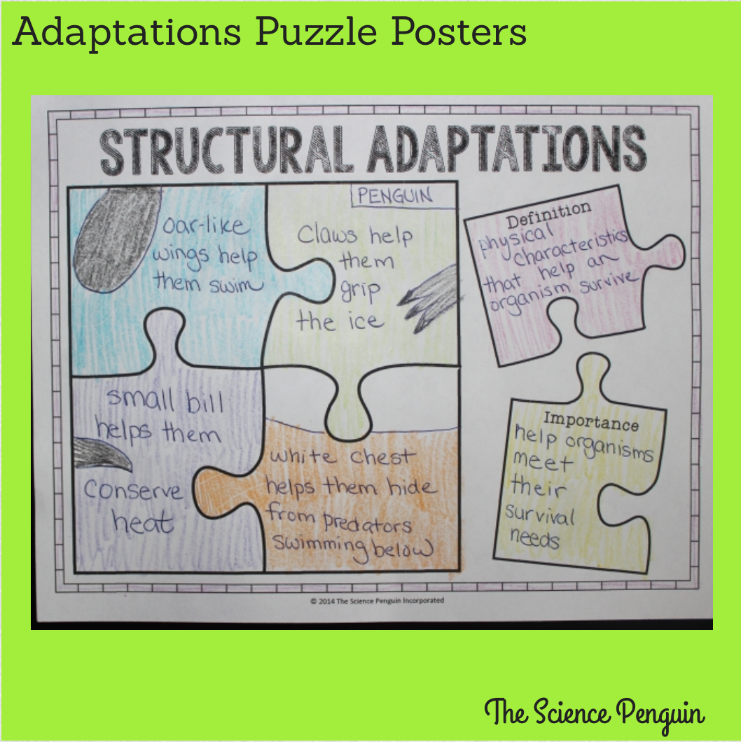 Science Penguinu0026#39;s Science Plans {Adaptations} u2014 The ...