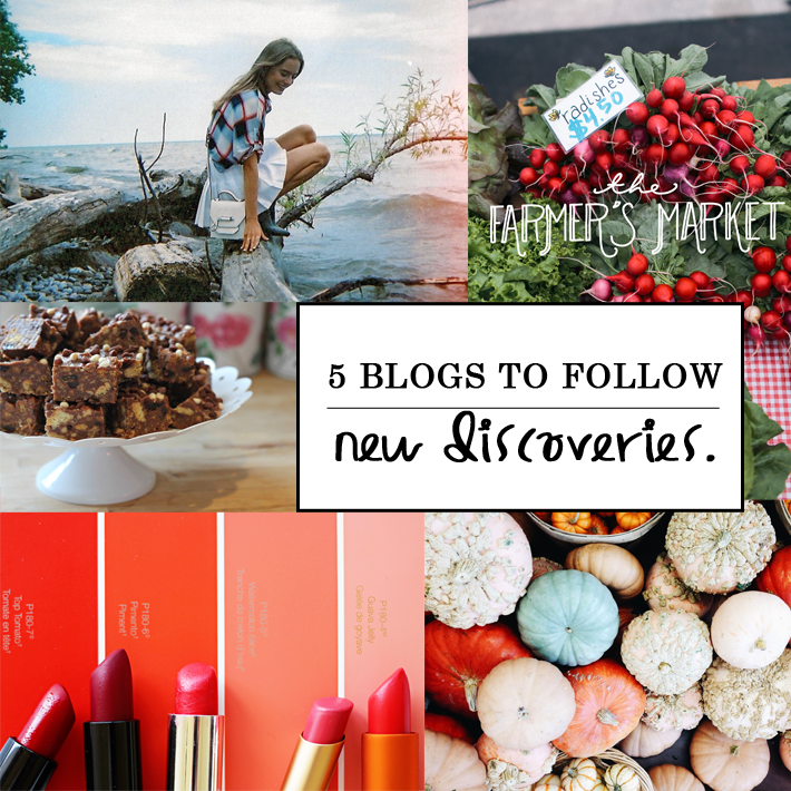 A beauty blogger recommends five different blogs to follow: Citron and Guavaberry, Class is Internal by Sonya Esman, Mama Watters, The Fresh Exchange Blog and Blue October