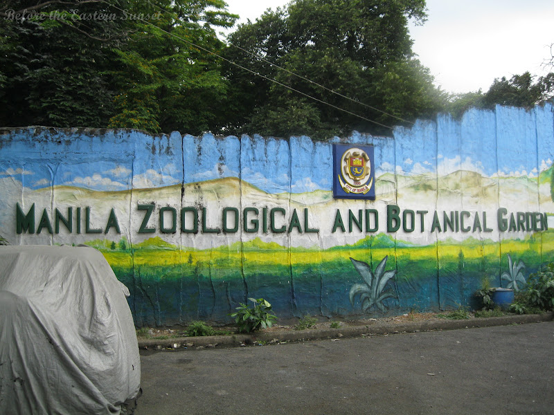 Private crew help Manila Zoo care for Mali the Elephant, other ...