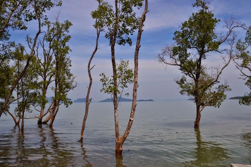 Lanta town, mangrove, Kho Lanta, Thailande, Lanta Hai