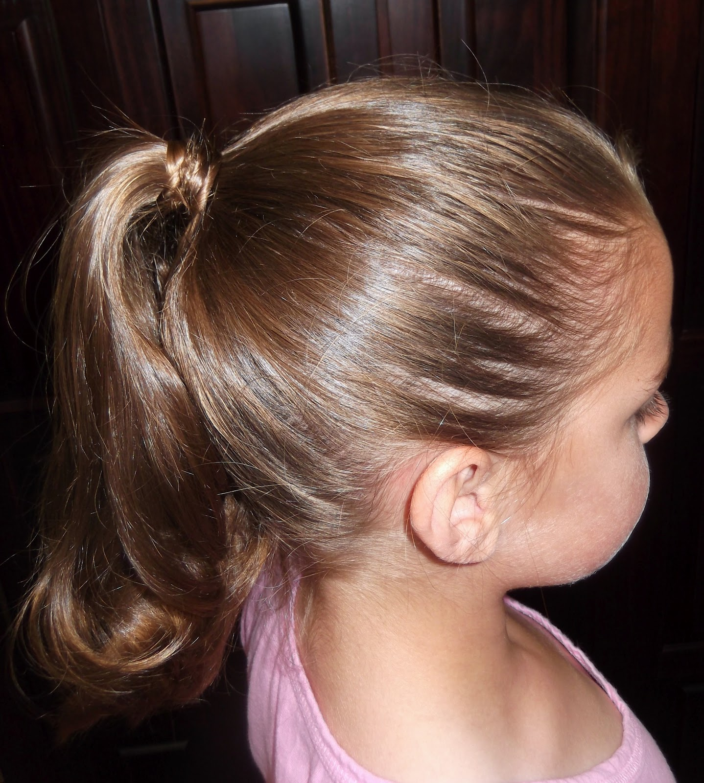 Fantastic Black Girl Hairstyles Pony Tails Little Girl Braid Ponytail Hairstyles