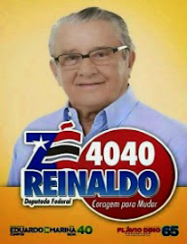 Dep. Zé Reinaldo Nº 4040