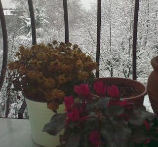 Her yerde kar var !