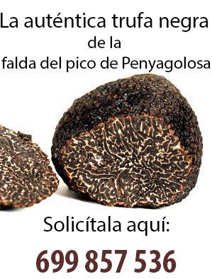 Trufas de Penyagolosa