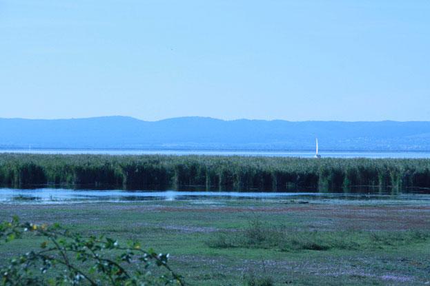 Ferto-Neusiedler Cultural Landscape Hungary