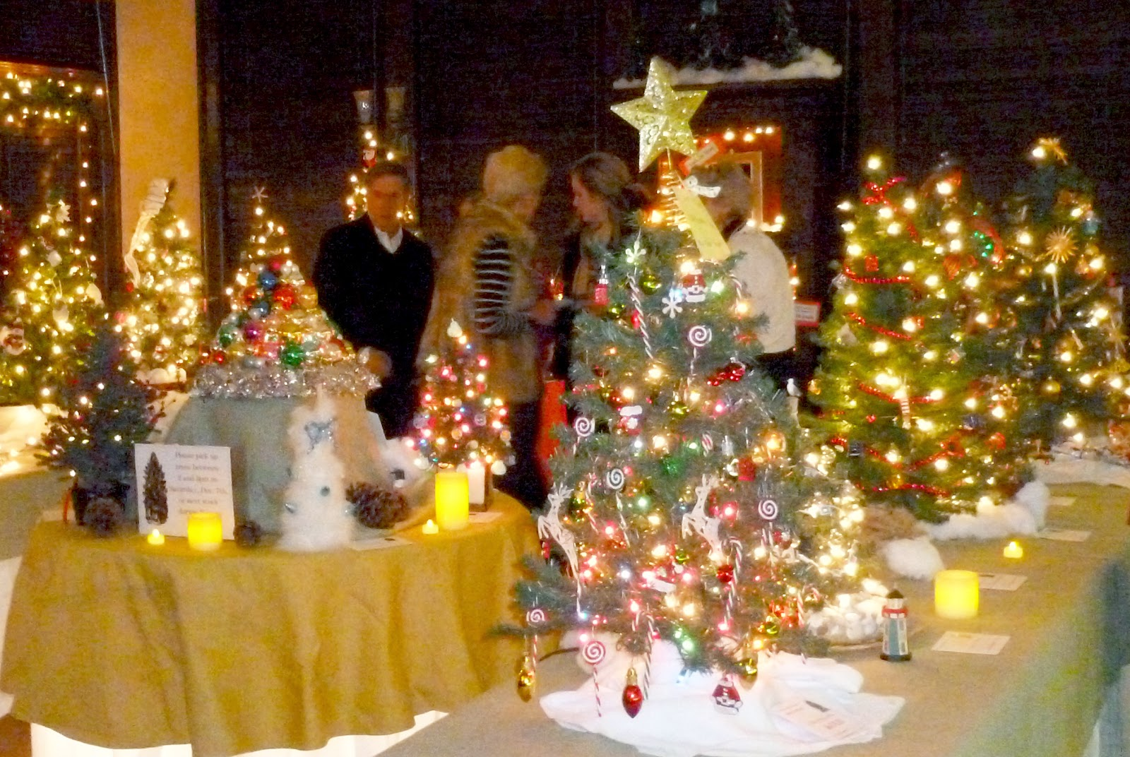 743 tags christmas decorations festival holiday christmas tree views - Washington S Festival Of Trees Lights