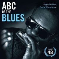 ABC of the blues volume 48