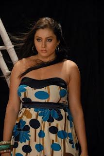 namitha_hot-HD_wallpapers_2011