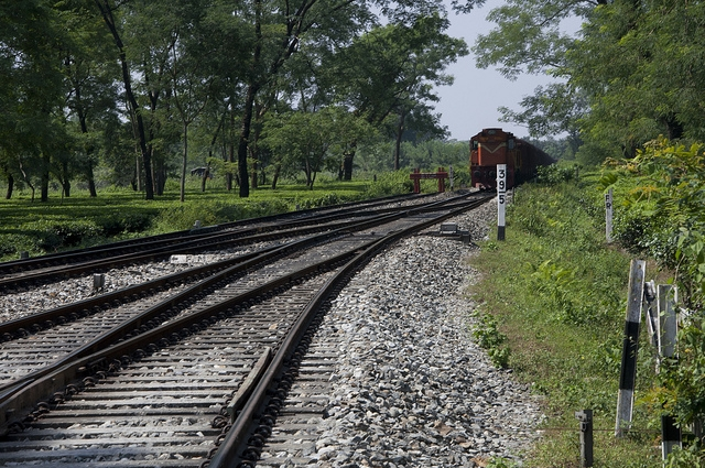 Dooars India  city photos : 25 Most Scenic Train Routes in India – Arnab Maity   The Wireless ...