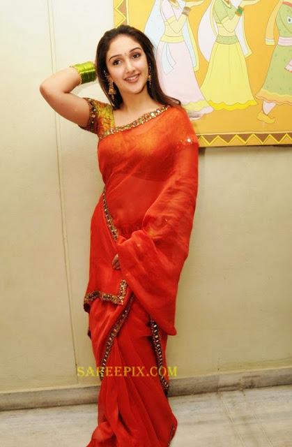 Sridevi_ornage_transparent_saree_posing_for_photos