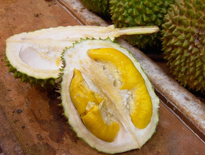 "Amazing Benefits of Durian ""King of Fruit"" for Healthy and Body"
