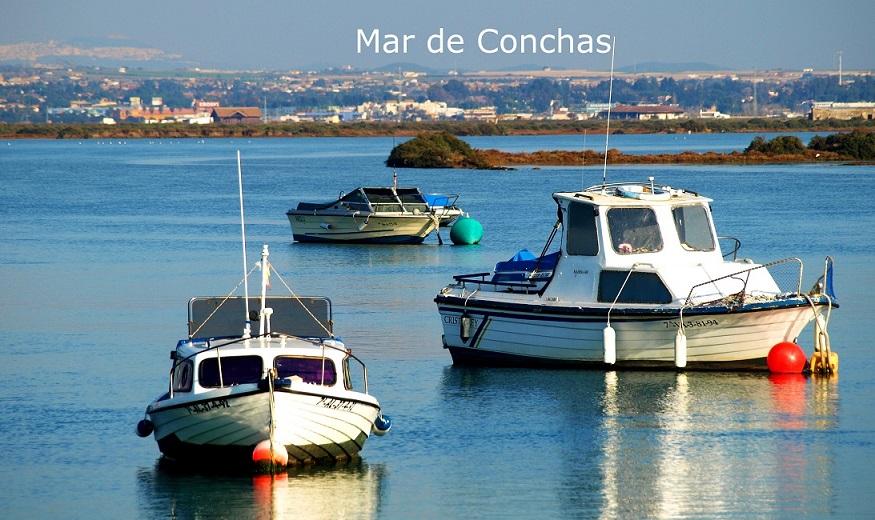 MAR DE CONCHAS