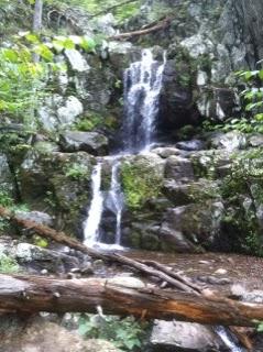 Hawksbill Cabin Doyles River Jones Run A 75 75 Hike