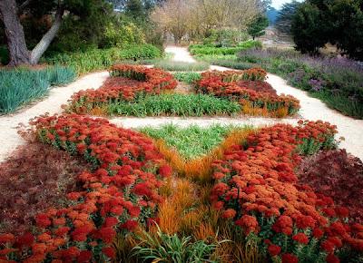 تصاميم وديكورات حدائق منزلية drought-tolerant-garden-design-eckersley-1.jpg
