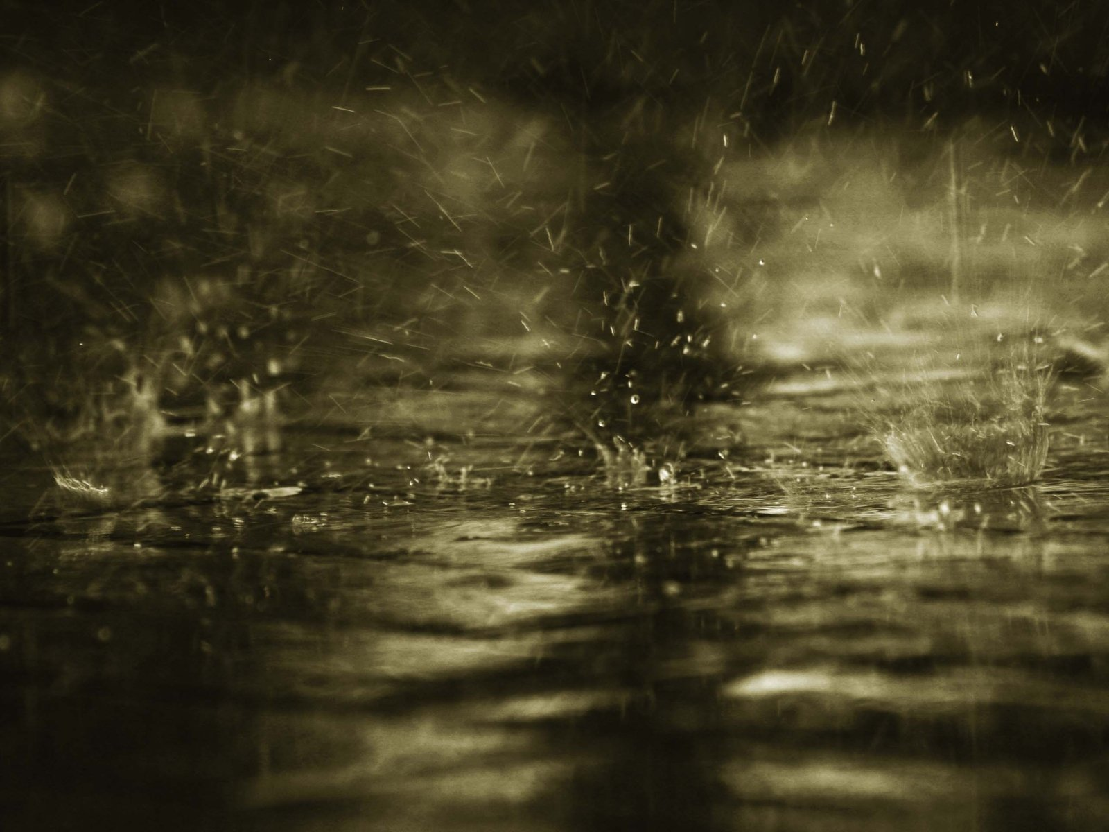 Wallpapers Rain Wallpapers Love Wallpapers Alone