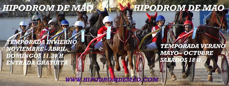 WWW.HIPODROMDEMAO.COM
