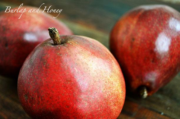 Burlap and Honey: Cocoa Pear Crisps