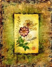 Shelley-Xie