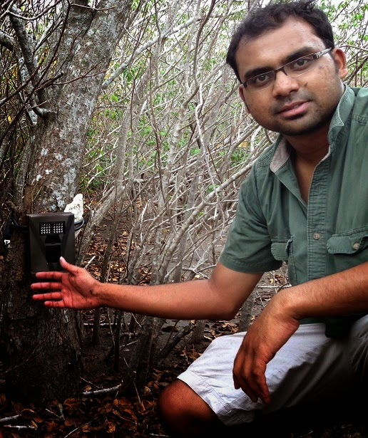 Fishing Cat conservation Ashwin Naidu
