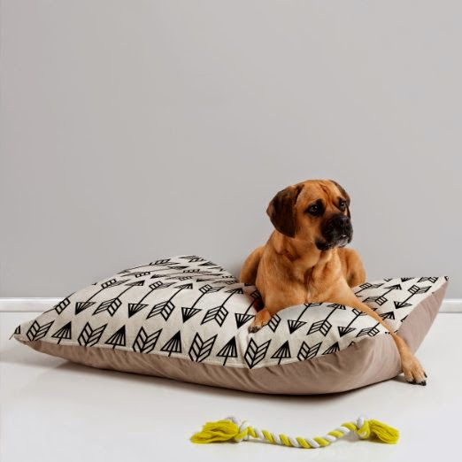 cool design dog bed accessories