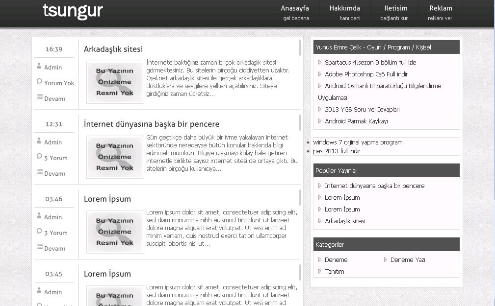 Softartz Blogger Teması